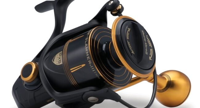 Best Fishing Reels for Saltwater